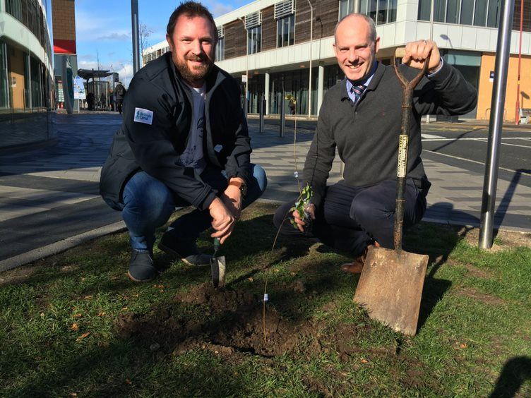 Swindon MPs Call On Community Groups To Apply For Share Of £10m Tree Fund